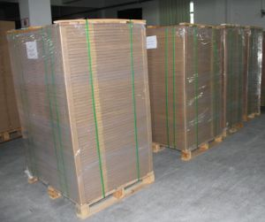 Ipagsa Quality Conocido Como Doble Riesgo Layer Con La Hinchada CTP Plate pictures & photos