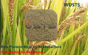 Rice Protein Meal with High Quality for Fodder (Feed Grade) pictures & photos