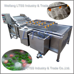 Fruit and Vegetable Cleaning Machine/Vegetable and Fruit Washing Machine pictures & photos