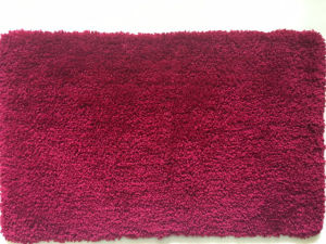 Bath Rugs Floor Carpet Mat pictures & photos