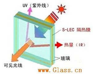 Sheet Glass for Office, Dining Room, etc pictures & photos