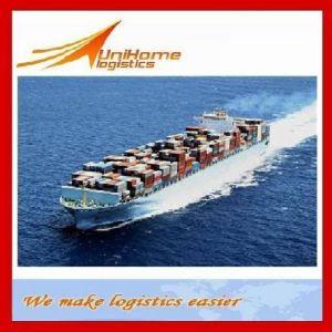Sea Freight From China to Mauritius, Mali, Reunion, Libya, Liberia, Kenya