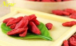 Ningxia Speciality Goji Berry with High Worldwide Reputation