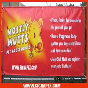5m Seamless Frontlit PVC Flex Banner pictures & photos
