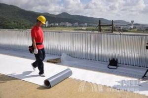 Tpo Waterproof Membrane- Best Choice for You Flat Concrete Roof pictures & photos