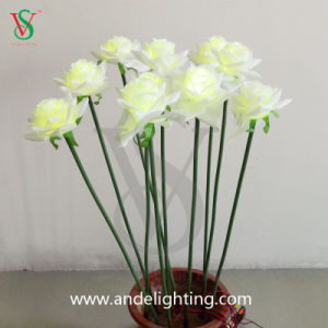 LED Artificial Rose Lights for Wedding pictures & photos
