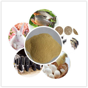 Hot Sale Yeast Powder 45% 50% 55% Animal Feed Additives pictures & photos