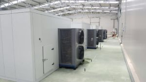 China Best Manufacturer Heat Pump Fruit Drying Machine pictures & photos