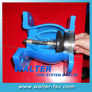 Cast Iron Flanged Silent Check Valve pictures & photos