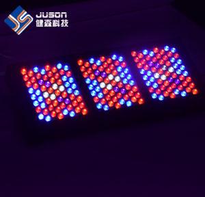 Customizable LED Grow Light 1000W with 5W Epistar Brideglux pictures & photos