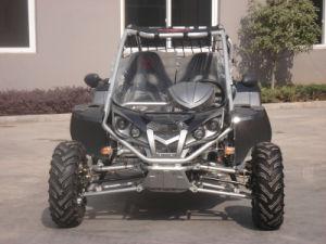 Black 500CC Go Karts With EEC (RLG1-500DZ)