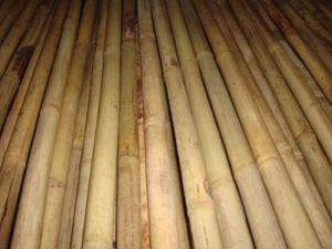 Tonkin Bamboo Pole pictures & photos