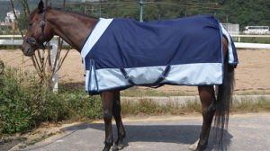 Turnout Blankets Water-Proof and Breathable, Horse Rug, Horse Product (RG-N01) pictures & photos