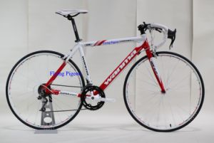 "High Quality 27"" Road Racing Bike (FP-RB-07) pictures & photos"