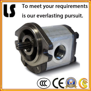 High Quality Hydraulic Vane Oil Pump with SGS