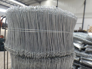 High Quality Galvanized Loop Tie Wire in Good Quality pictures & photos