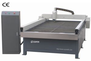 Advertising Plasma Cutting Machine for Metal pictures & photos