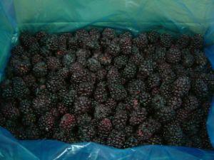 Frozen Blackberry (NK) pictures & photos