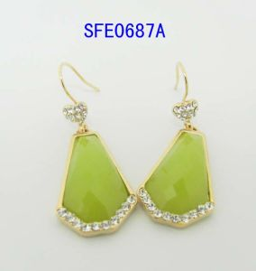 Fashion Jewelry, Irregular Shaped with Acrylic Jewelry Earring (SFE0687A)