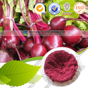 Natural Pigment Dried Red Beet Root Powder pictures & photos