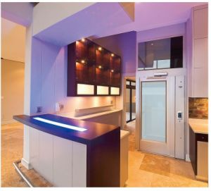 250kg House Elevator Home Lift, Elevator pictures & photos