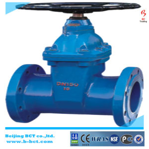 DIN Standard Cast Iron (Ductil iron) Gate Valve with Flanged, Bct-Gv-01 pictures & photos