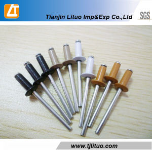 Colored Steel Blind Rivet Fron Tianjin China pictures & photos