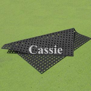 Anti-Slip Rubber Mat, Grass Rubber Mat, Antibacterial Floor Mat pictures & photos