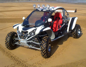 500cc 4X4 Racing/Hunting/Fishing/Camping Buggy/Go Kart/ATV/Quad