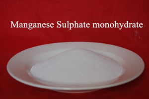 Manganese Salt Monohydrate CAS No10034-96-5 pictures & photos