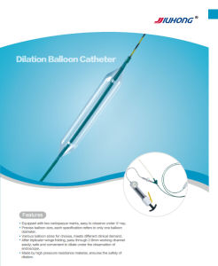Endoscopic Accessories Esophagus Balloon Dilator Catheter pictures & photos