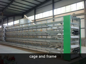 Chinese High Quality Layer and Broiler Poultry Equipment One Stop Service (XGZ-GR023) pictures & photos