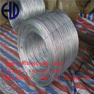 Electro Galvanized Wire for Fence pictures & photos