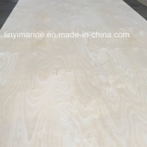 White Birch Plywood 18mm C/D Grade Carb2 Certificate Poplar Core pictures & photos