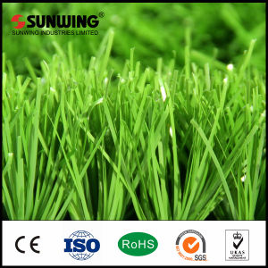 China Cheap Indoor Plastic Grass Mat Fake Carpet pictures & photos