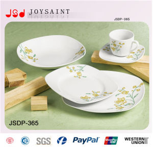 Hot Sale Squared Dinnerware Jsd116-S019)