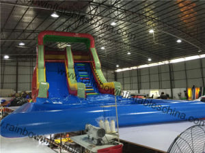 No Printing Inflatable Water Slide with Big Pool pictures & photos