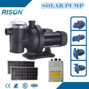 Quality DC Solar Water Pump Made in China (5 Years Warranty) pictures & photos