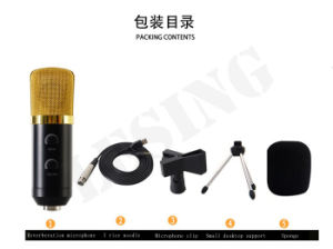 Computer Special Microphone Speaker Cable Capacitance Reverberation Microphone pictures & photos