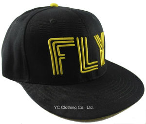 Customize 3D Embroidery Snapback Hats pictures & photos