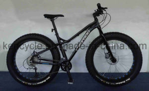 Fat Tire Mountain Bicycle Bike/Chopper Beach Cruiser Bicycle Bike/4.0 Fat Tire Beach Cruiser Bicycle Bike/Fat Bike pictures & photos