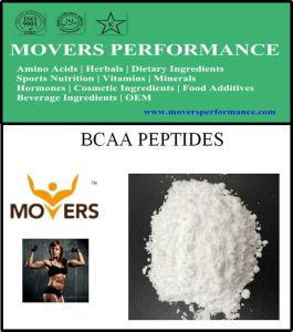 Sports Nutrition Bcaa Peptides 2: 1: 1 pictures & photos
