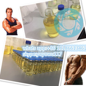 Most Populor Anabolic Powder Winstrol for Muscle Growth Cycle pictures & photos
