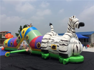 Double Stitching Inflatable Tunnel Accept Customize Design (RB12013) pictures & photos