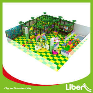 Jungle Gym Special Needs Indoor Playground Equipment pictures & photos