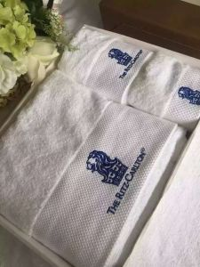 Face Towel / Bath Towel / Bath Mat pictures & photos