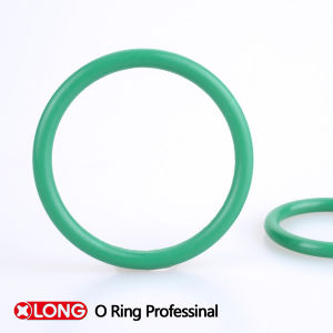 Competitive HNBR Green O Ring for Refrigeration Equipment pictures & photos