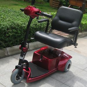 Low Duty 3 Wheels Electric Mobility Handicapped Scooter (DL24250-1) pictures & photos