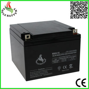 12V 24ah AGM Lead Acid Battery for Alarm System