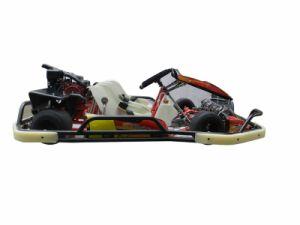 200cc Go Kart pictures & photos